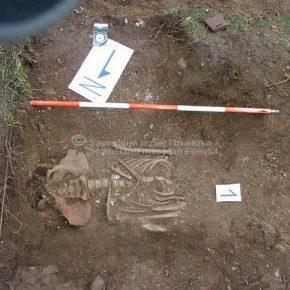 Комини, археолошка ископавања 2007.год.-6
