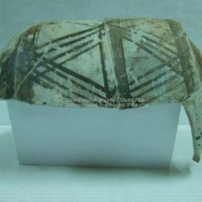Komini, arheološka iskopavanja 2008.god.-23